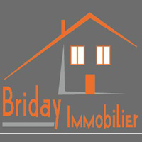logo-standard-site-web-briday-immobilier